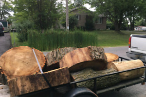 FREE FIREWOOD TABLE-SIZED SLABS TOO