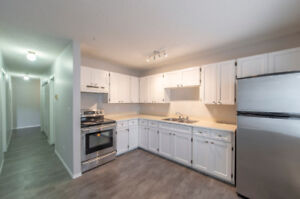 Newly Renovated 2br Apt Unit, Laundry-in-Unit, 9240 Corbould St