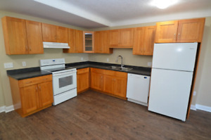 1 BED all inclusive  apt downtown Avail Aug-Sept 1 223 Ontario
