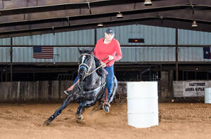 Barrel Racing Clinic With World Champion - Connie Combs!!
