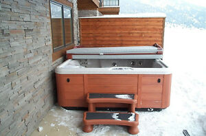 Hot tub spring service drain clean fill & maintenance available