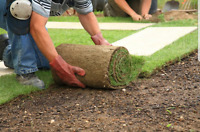 Landscaping opportunity for Students