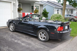 2003 Ford Mustang Grey Leather Convertible