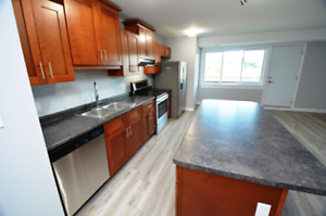 2-Bedroom - Renovated inclusive  Avail Jan 1   - 47 Thomas