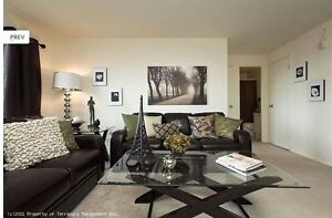 Updated Two Bedroom at Huron/Highbury with a Pool! London Ontario image 6