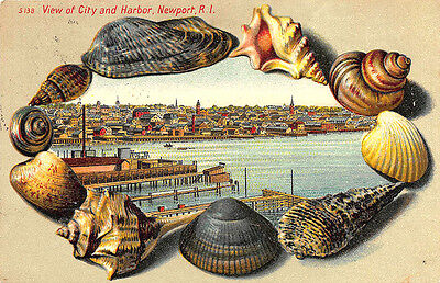 "Newport RI Langsdorf Publisher Shell Border ""View of City and Harbor""  Postcard"