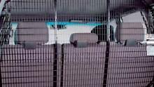 2007- 76 SERIES LANDCRUISER WAGON CARGO BARRIER GENUINE Parramatta Park Cairns City Preview
