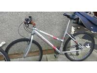 Carrera adult bike