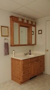 Bathroom Vanity, Cabinets and Counter top/sink