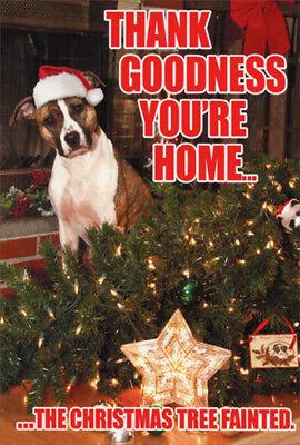 Tree Fainted Dog Funny Nobleworks Christmas Card