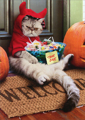 Cranky Devil Cat Avanti Funny Halloween Card - Halloween Card Animated