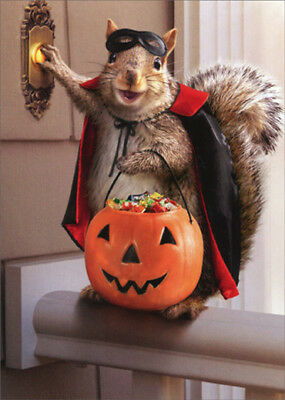 Squirrel Trick Or Treating Avanti Funny Halloween - Halloween Cards
