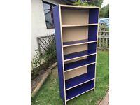 IKEA Blue Shelving Unit