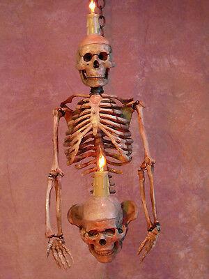 Skeleton Torso Wall Sconce, Skull, Halloween Prop - Skeleton Torso