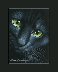 Black Cat ACEO Print Asking by I Garmashova