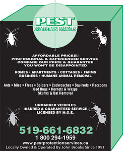 Affordable Pest Control Solutions London Ontario image 3