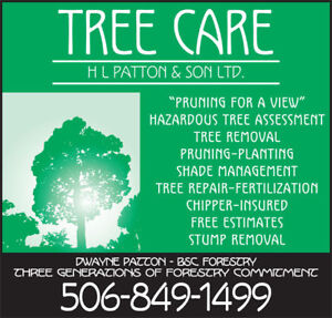 Hazardous Tree Removal & Stump Removal (INSURED)