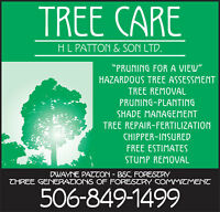 Tree Service | BSC Forestry. 3 generations committed to preservi