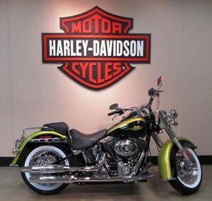 Harley FLSTN