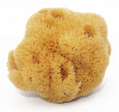 Children/Adult Bath Unbleached Brown Sea Sponge 100% Natural 4''- 4.5''