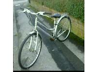 SENTIMENTAL BICYCLE STOLEN PLEASE RETURN