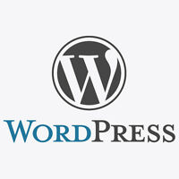 WORDPRESS PLUGIN DEVELOPER