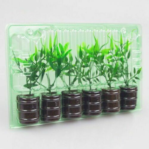 Clone Shipper 6 Plant cell +100 Hr LEDs Rockwool or Plugs Germination Seed Tray
