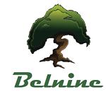 Belnine