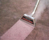 NEEDS CARPET CLEANING? - PROFESSIONAL CLEANER HERE