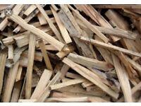 Dry kindling wood