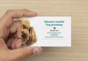 Shiann'es mobile dog grooming Ipswich Ipswich City Preview