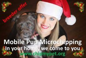 Mobile Pup Microchipping - Christmas Winter Holiday season