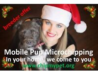 Mobile Pup Microchipping - Christmas Winter Holiday season