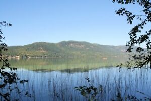 Waterfront Acreage with 300' of Lakefront