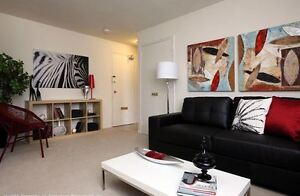 Renovated Bachelor in Wortley Village (Grand Ave) for Feb.