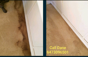 Professional Carpet & Upholstery Cleaning Toronto!