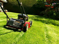 Lawn mowing Sydney and surrounding areas