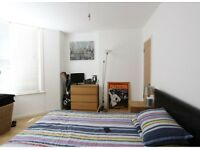 Spacious 2 Double Bed Flat- Elephant & Castle