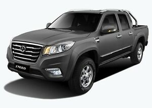 2016 Great Wall Steed 4x2 Dual Cab Turbo Diesel West Tamworth Tamworth City Preview