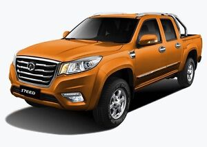 2016 Great Wall 4x4 Dual Cab TDI West Tamworth Tamworth City Preview