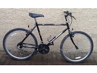 "Bike/Bicycle. GENTS RALEIGH "" GRAVITY "" MOUNTAIN BIKE"