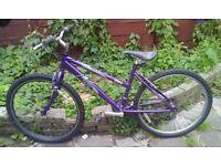 Rileigh girls' bicycle.