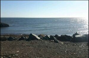 Beautiful land to rent for your travel trailer by the sea