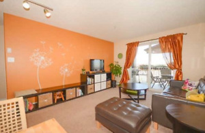 Fully Furnished 1-Bdrm Condo Utilities Included Avail Oct 16