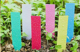 """Multi Coloured Plant Labels 150 pieces 2""""/5cm See dets for other deals"""