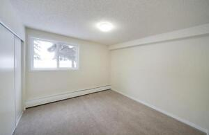 STUDENT SPECIAL - Quiet Building Close to Southgate Mall Edmonton Edmonton Area image 4