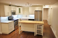 Bright, beautiful, brand new fully renovated basement suite