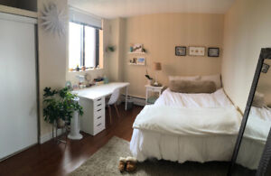 Beautiful Room in South End 2 Bd Apartment