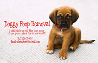 DOGGY POOP REMOVAL