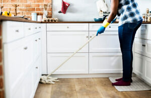 Seeking cleaning company for popular rental website